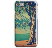 Late Hues at Hinsei iPhone Case/Skin