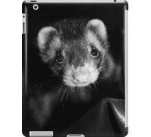 Ferret iPad Case/Skin