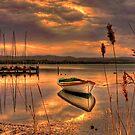 Golden twilight by Chris Brunton