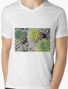 Round cactus on the ground Mens V-Neck T-Shirt