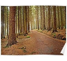 Mourne Mountains Forest Poster