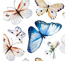 Butterflies multi colour in flight, pretty blue, orange, brown and white butterfly design, cute bold animal print design, classic statement fashion clothing, soft furnishings and home decor  Photographic Print