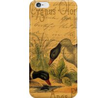 Mallards and Swan Collage iPhone Case/Skin