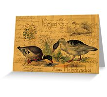 Mallards and Swan Collage Greeting Card