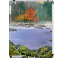 Morning fog at the river enns iPad Case/Skin