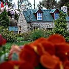 Cottage at Floriade in Canberra/ACT/Australia by Wolf Sverak