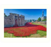 Poppies in the Moat 2 Art Print