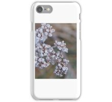South Island New Zealand iPhone Case/Skin