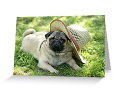 Pug with a hat Greeting Card