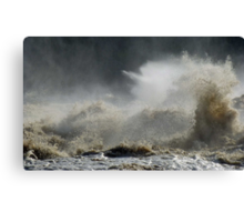 The Force of Nature Canvas Print