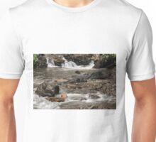 Streaming Down Latourell ©  Unisex T-Shirt