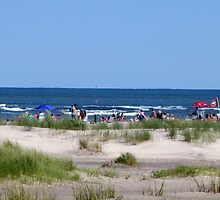 """Another day at the Beach by Scott """"Bubba"""" Brookshire"""