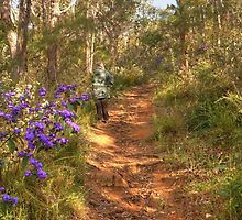 Springtime in Mt. Melville Reserve, Albany, Western Australia by Elaine Teague