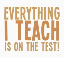 EVERYTHING I teach is on the test by jazzydevil