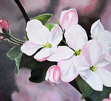 Apple Blossom by Sarah King