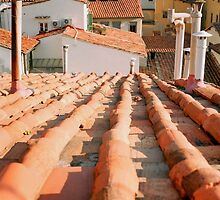 Rooftops, Florence by Tiffany Dryburgh
