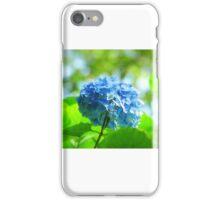 """"""" Blue Danube """" iPhone Case/Skin"""