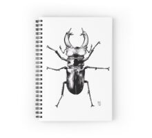 Lucanus Cervus Spiral Notebook