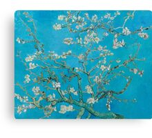 Vincent Van Gogh - Branches With Almond Blossom, 1890 Canvas Print