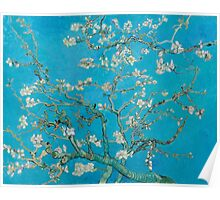 Vincent Van Gogh - Branches With Almond Blossom, 1890 Poster