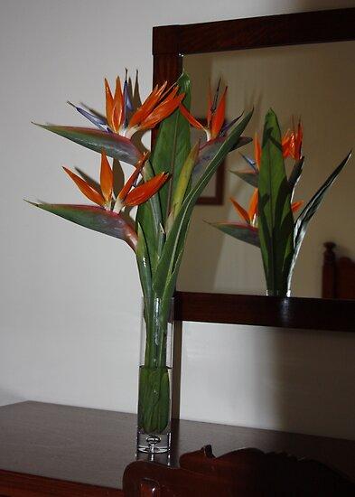 Vase of Strelitzia - Bird of Paradise by AnnDixon