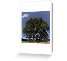 The Saintly Oak Tree Greeting Card