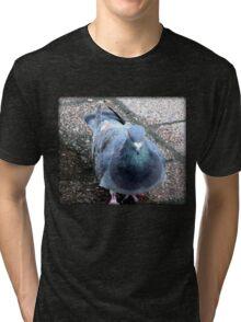 Urban Pigeon on City Sidewalk Tri-blend T-Shirt