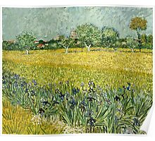 Vincent Van Gogh - Field With Flowers Near Arles, 1888  Poster