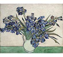 Vincent Van Gogh - Irises 2 Photographic Print