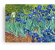 Vincent Van Gogh - Irises, 1889  Canvas Print