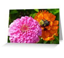 Bizzy Bumble Bee Greeting Card