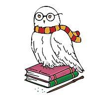 Hedwig by SMalik