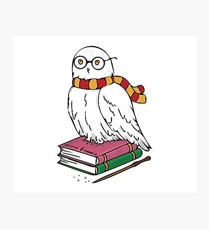 Hedwig Photographic Print