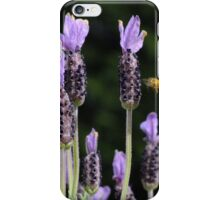 Italian Lavender - Avonlea iPhone Case/Skin