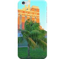 baby palm and the electricity museum iPhone Case/Skin