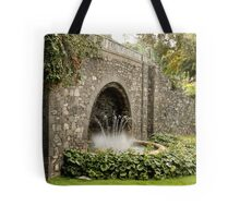Fountain in the park. Tote Bag
