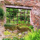 Just an Old Window by hootonles