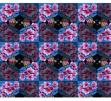cherry blossom pattern 02 Photographic Print