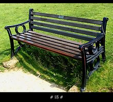 The 1000 Benches Project - # 18 # by Roberto Alamino