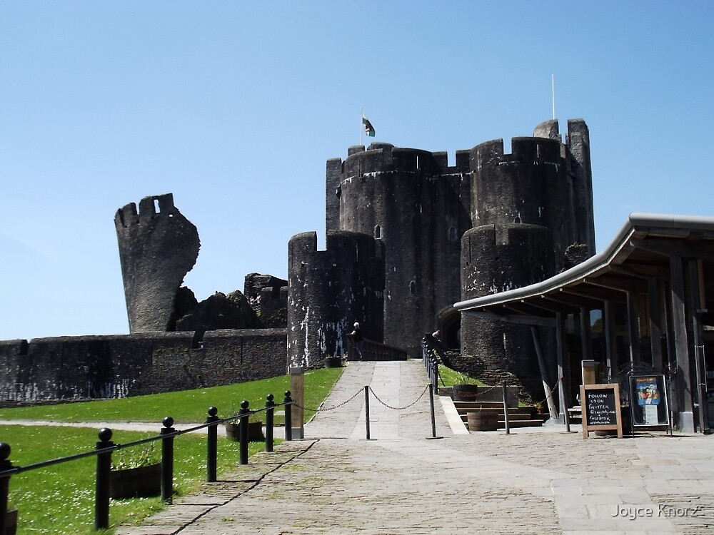 Castles of Wales   by Joyce Knorz