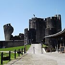Castles of Wales   by Joyce Knorz