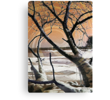 Frozen in Time 2 Canvas Print