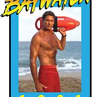 Mr. Baywatch by Andrew Cooper