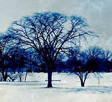 Winter Blues by SRowe Art