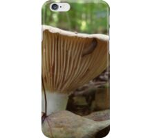 Spare Ribs iPhone Case/Skin