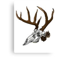 Whitetail Buck Skull Canvas Print