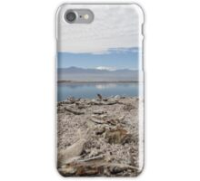 The Salton Sea iPhone Case/Skin