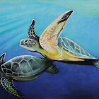 Sea Turtles by Shannon Schober