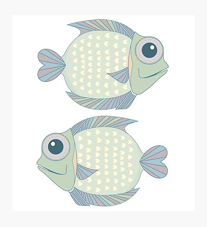 Two Cool Fish Photographic Print