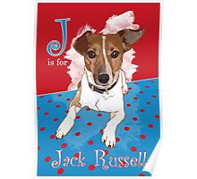 J is for Jack Russell Poster